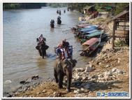 Elephant_trekking