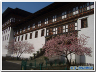 Tashicho_dzong