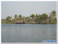 Backwater_boat