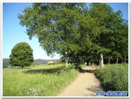 Pilgrimage_montegozo