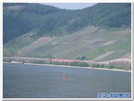 Rheinblogtemplate