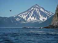 ユーラシア旅行社のカムチャツカツアー:ビリュチンスキー火山(標高2173m)アバチャ湾クルーズより