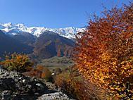 大コーカサス山脈の黄葉