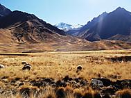ペルー旅行、ペルーツアー