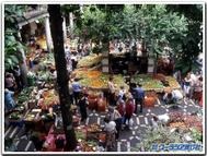 Funchal_market