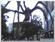 Roppongi_spider