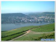 Rhudesheim_panorama