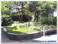 Toshi_center