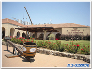 Golan_winery