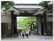 Walking_gate