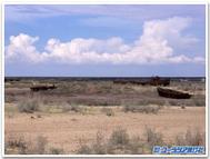Aral3