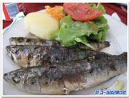 Portugal_sardin