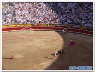 Pamplona5