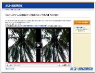 3d_image