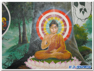 Buddhatohasublogtemplate