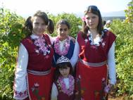 Rose_bulgaria