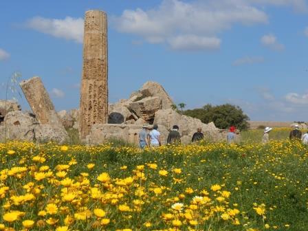 ギリシャ遺跡セリヌンテ