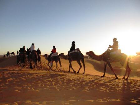 サハラ砂漠、モロッコ、ラクダ、旅行、ツアー