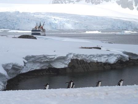 小型船で旅する南極はたっぷり上陸を楽しめます
