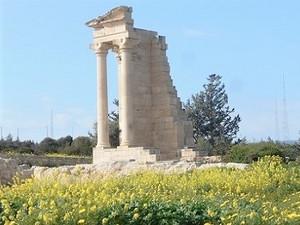 菜の花に囲まれたアポロン神殿