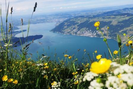リギ山からの眺望