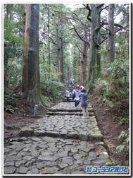 熊野古道:熊野那智大社~那智大滝