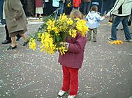 ミモザを抱えた子供。ニースのカーニバルにて